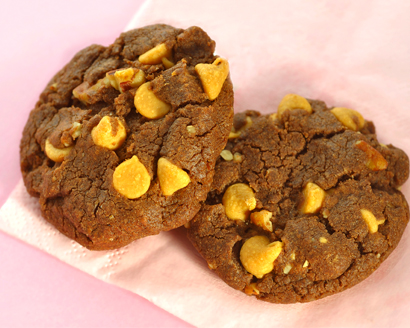 Butterscotch Fudgies